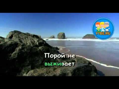 Песни из мультфильма приключения капитана врунгеля слушать