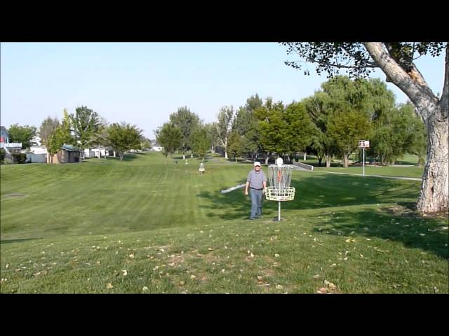 The happy disc golfer