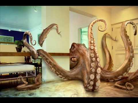 Who Owns The Octopus - William Orbit