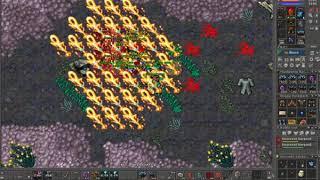 [Tibia] Diamond Arrows Paladin Seacreast Grounds 1.5kk Exp/Hr Loot ate 150k /hr
