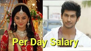 Per Day Salary Of Swaragini Actors