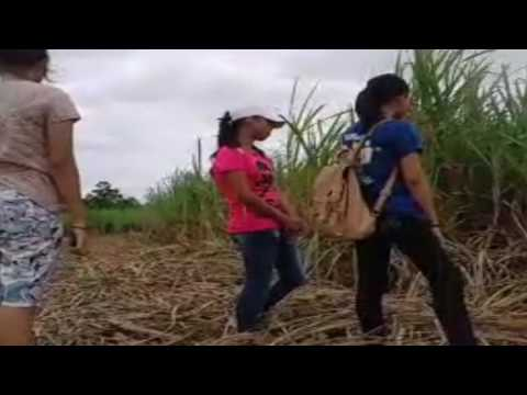 Karga Tapas: Sugar Cane Workers Documentary (Educ 2 Project)