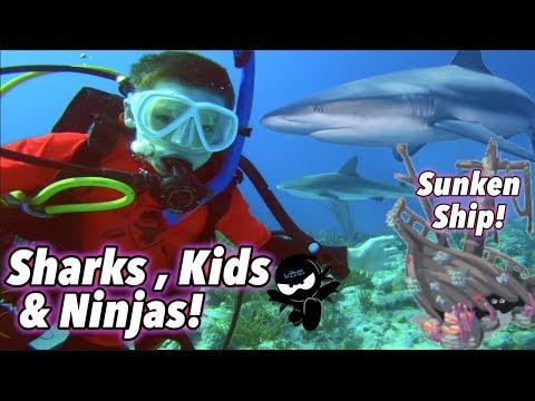 We swam with Sharks & found a Sunken Ship! (Bahamas) III Ninja Kidz TV