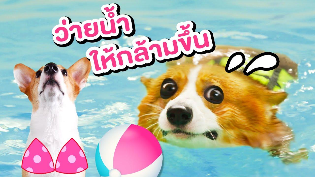 แผนจะผอม EP.2 I ว่ายน้ำกับโค้ชเงือกสาว!!!
