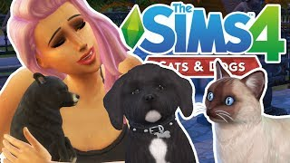 First Impressions & Making My Pets | The Sims 4 YouTuber Pets | Episode 1