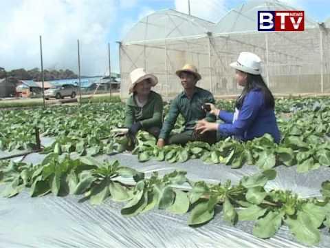 Bokor Organic Farm Ver 02 (កសិកម្ម - បន្លែសរីរាង្គ នៅបូកគោ វគ្គ 02)