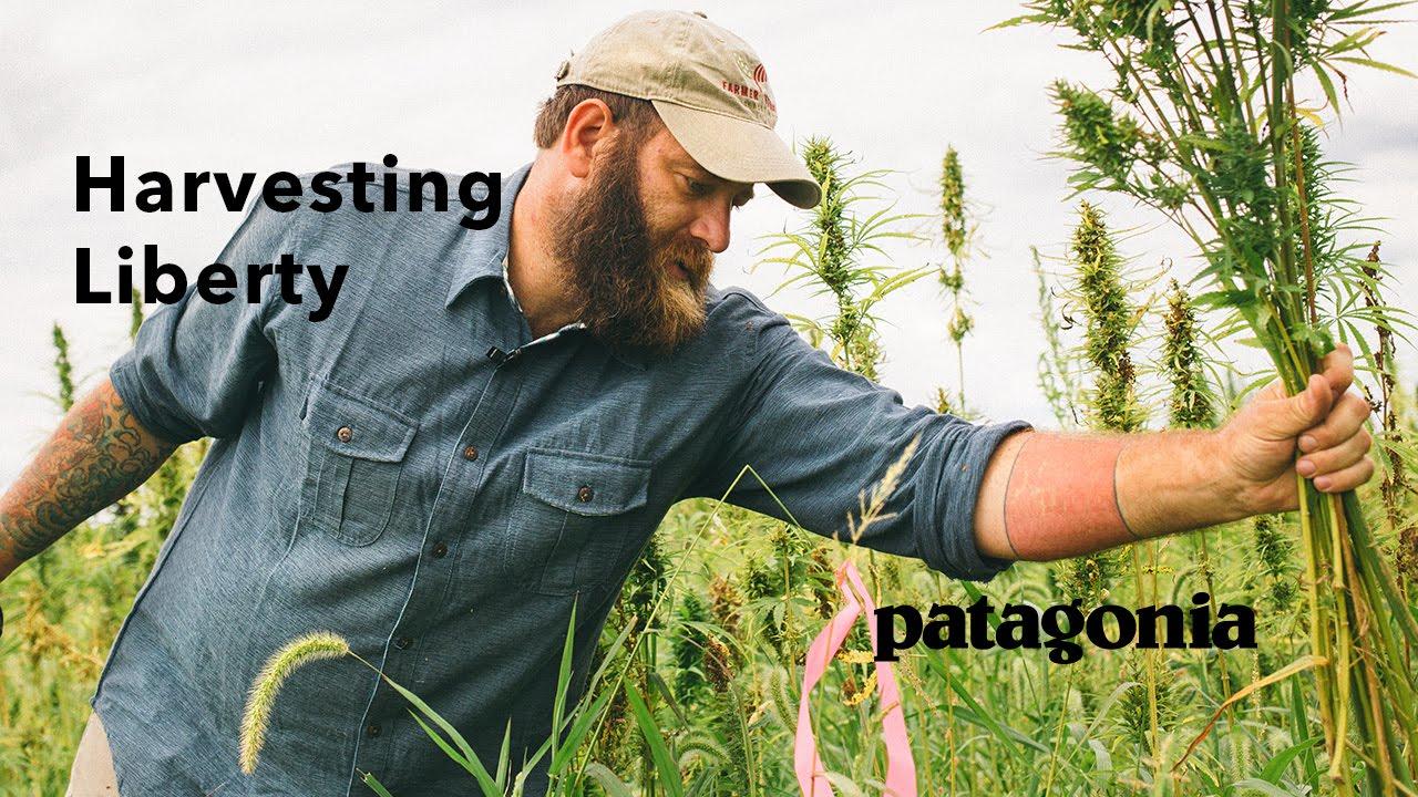 Harvesting Liberty