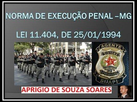 LEI 11.404 DE 1994 -NORMAS DE EXECUÇÃO PENAL-MG - 7