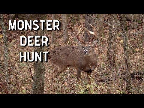 Monster Deer Hunt | Oak Creek Whitetails