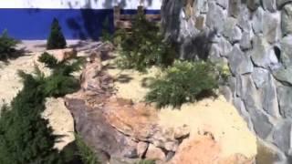 Рулонный газон Ялта купить 2014 Гаспра(, 2014-09-23T13:07:53.000Z)