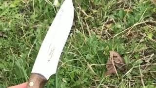 Кизлярский нож Тайга