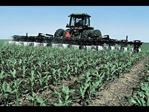 Does Climate Change Impact Crops