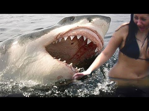 Top 5 SCARIEST Moments Caught On GoPro Camera!