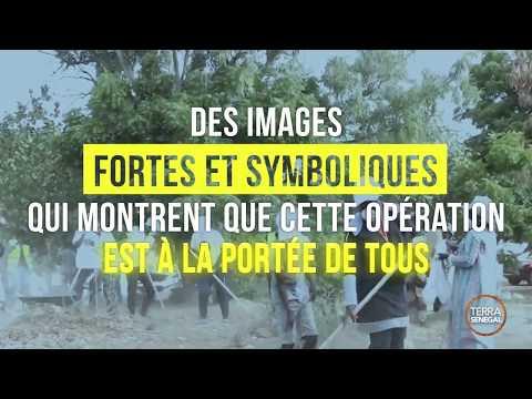 """Le Premier """"Cleaning Day"""" Est Un Succés Au Sénégal"""