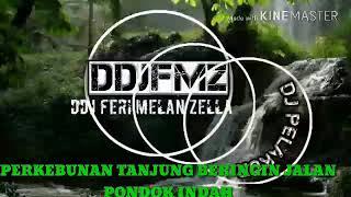 Gambar cover Dj remix DDJFMJ PELAKOR