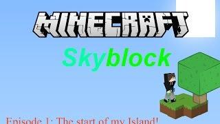 Minecraft Skyblock, Episode 1: The start of my Island!