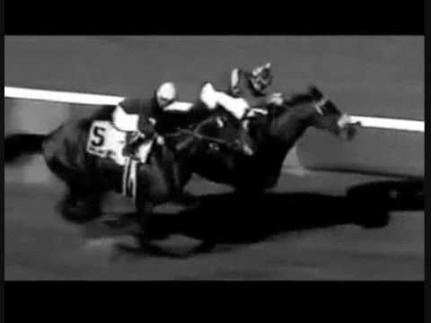 Top 100 U.S. Racehorses of the 20th Century - Part 2