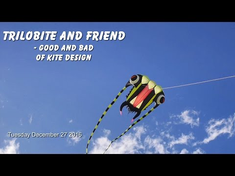 Trilobite & friend - good and bad of kite design