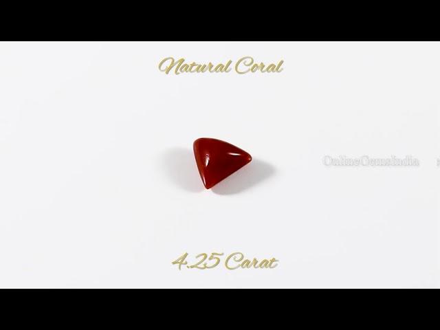 NATURAL RED CORAL (ITALIAN ) 4.25 CARAT
