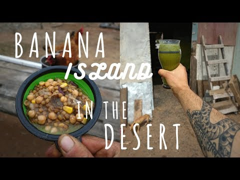 BANANA ISLAND in the Desert of Mexico Day 1 // Binge Eating Recovery