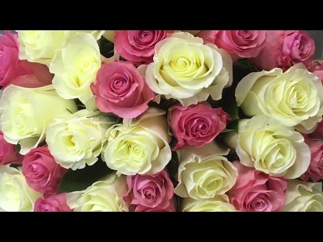 Букет из 45 бело-розовых роз