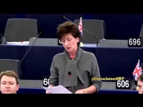 Valletta migration summit: 2000 words of nonsensical doublespeak - UKIP MEP Diane James