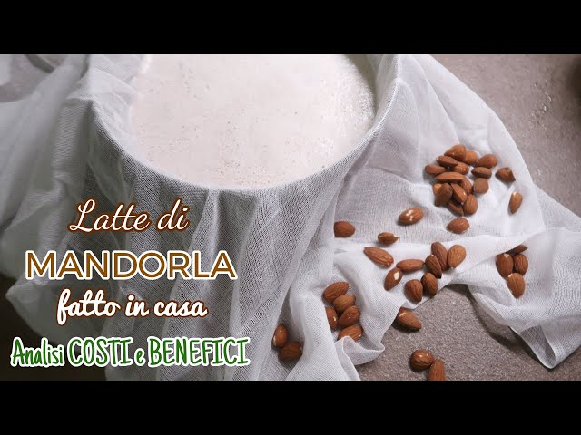Latte Di Mandorla Fatto in Casa: COME SI FA? CONVIENE?