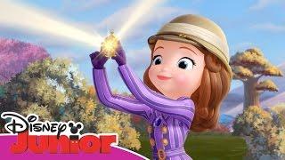 Sofia la Principessa - L'uovo dei pellicanti (Festa del papà) - Dall'Episodio 60