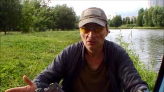 Карась Херабуна Южное Бутово 07 07 16