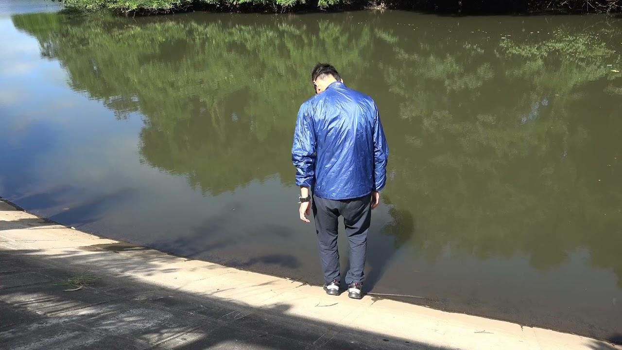 動画1 ため池に落ちる様子  Accidental immersion in the pond