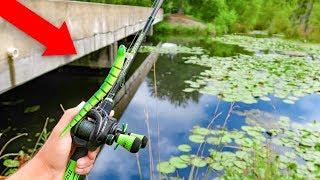 Fishing w/ SNAKES & RATS in HIDDEN Swamp (BIG FISH)