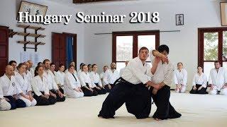 Aikido Hungary seminar Kangeiko 2018 - Shirakawa Ryuji shihan