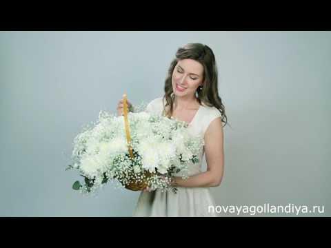Хризантемы в корзине.