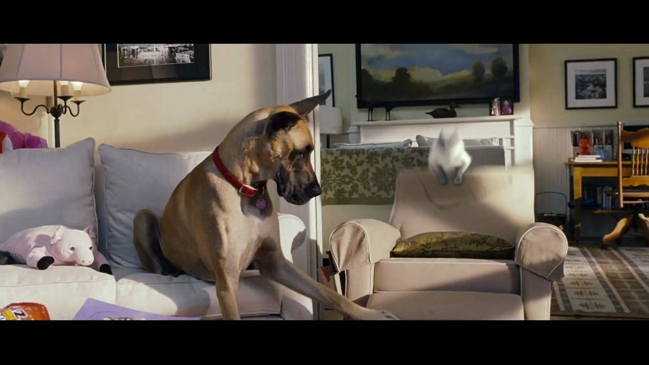 Marmaduke - In Theaters June 4! | Official Trailer (HD)  | 20th Century FOX