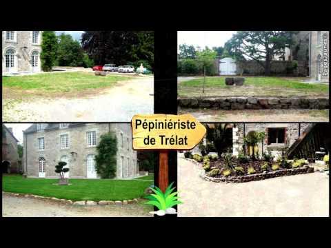 Pépinière  Horticulture  Plantes, arbres, fleurs  Aménagement  Jardin à Taden 22