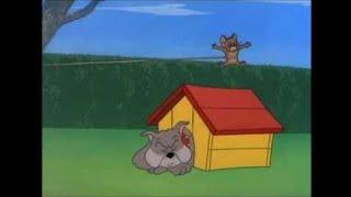トムとジェリーのエピソード71、犬の家1952