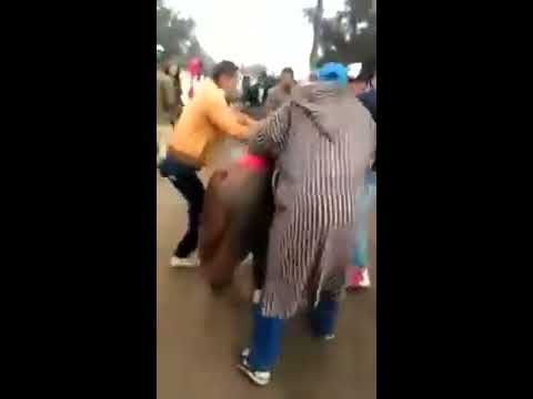 Women quarrel in the state of Morocco