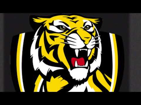RICHMOND TIGERS THEME SONG 2017 PREMIERS: KAVORKA REMIX!!