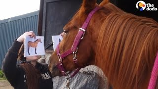 Horse Knows Exactly Which Picture To Choose