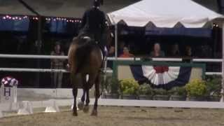 Gambar cover Lex & Susan Martin - FEI Freestyle Test of Choice - Flintridge 2013