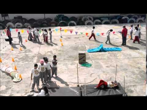 Circuito De Accion Motriz : Video circuito de acciÓn motriz youtube
