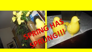 Spring Has Sprung Decor!