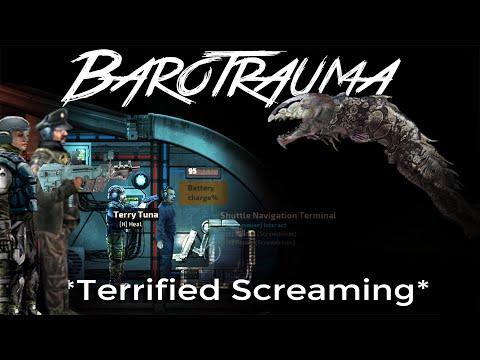 The Tragic Story of The Brave Berillian Combat Crew - BaroTrauma |