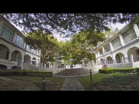 【Hong Kong Walk Tour】Kowloon Park 九龍公園 @ Tsim Sha Tsui