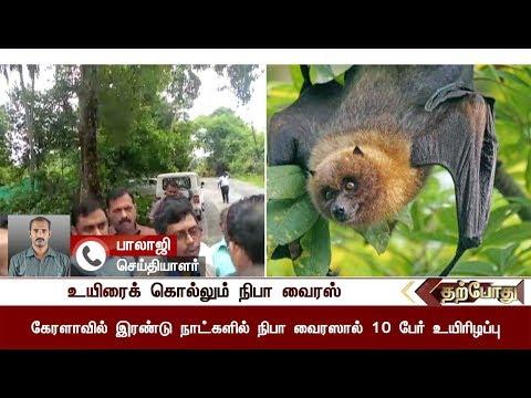 Detailed Report: Nipah virus attack at Kozhikode in kerala; 10 dead | #Virusattack #NipahVirus