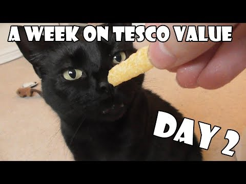 A Week On Tesco Value DAY 2