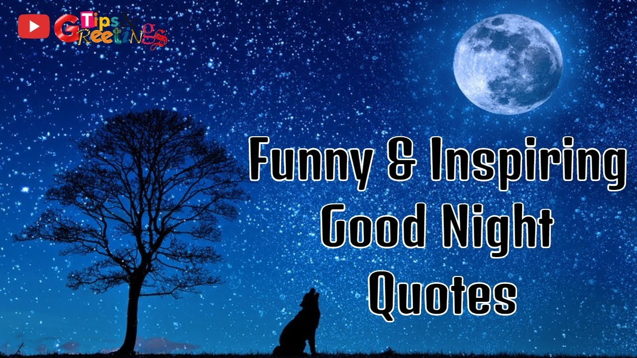 Good Night Message || Funny & Inspiring Good Night Quotes ...