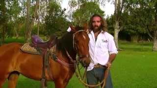 Los cómo cuando prevenir duerme charley caballos