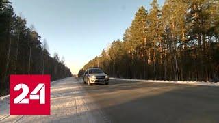 Смотреть видео Бойцы Росгвардии спасли потерявшегося мальчика и прыгнувшего с моста мужчину - Россия 24 онлайн