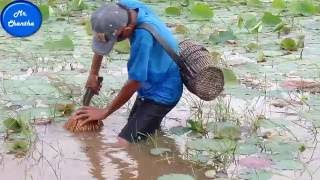How to catch fish by hand | Catching fishes part 04